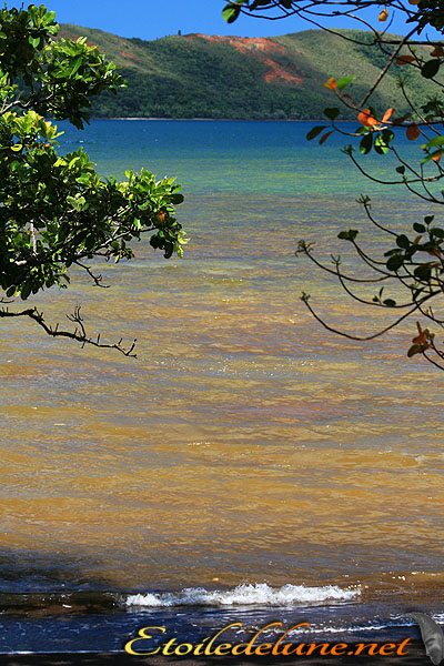 image_nouvelle_caledonie (25)
