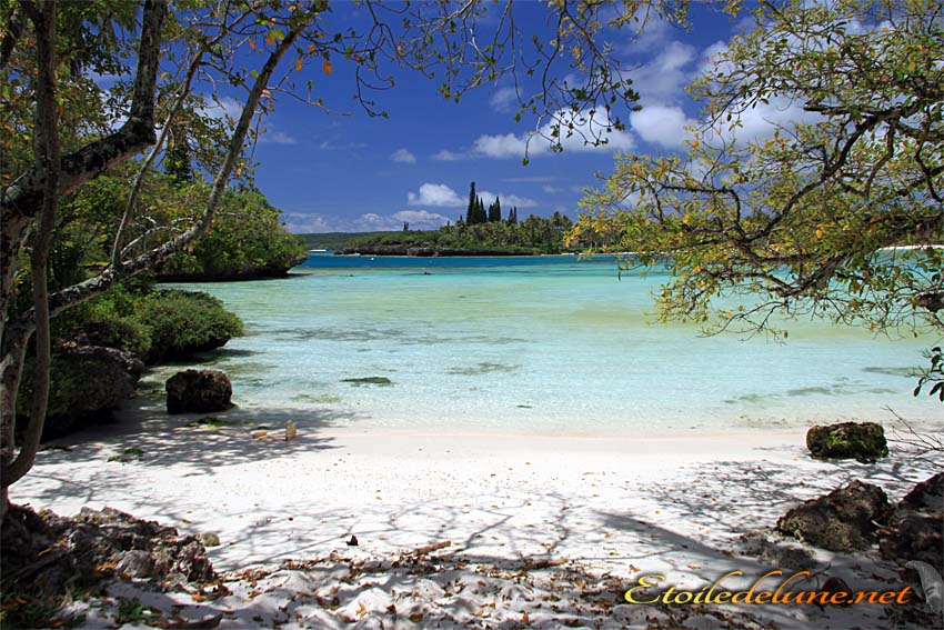 image_nouvelle_caledonie (4)