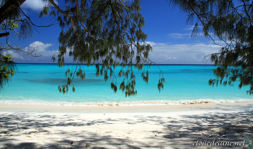 image_nouvelle_caledonie (50)