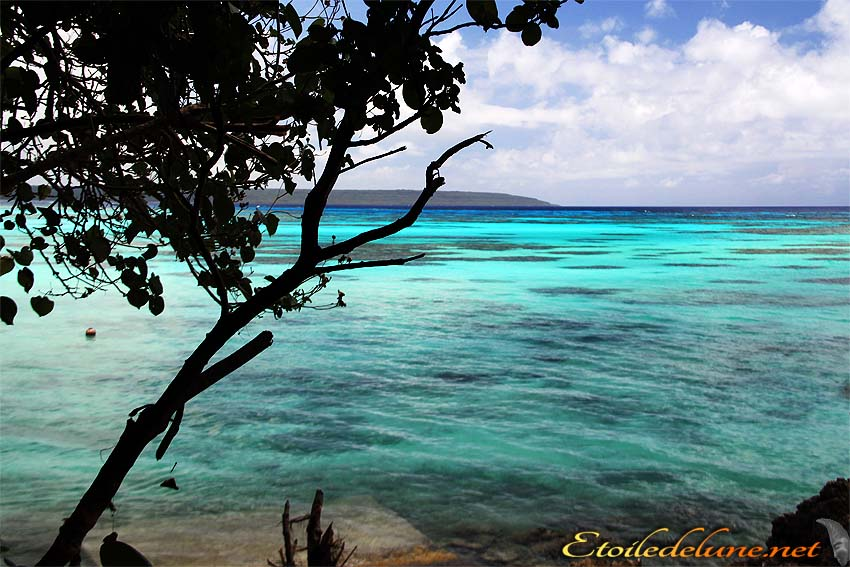 image_nouvelle_caledonie (55)