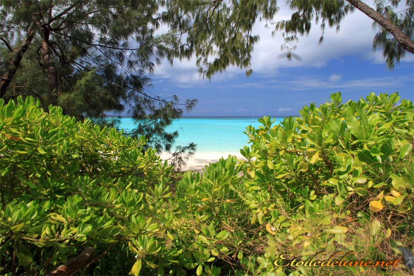 image_nouvelle_caledonie (59)