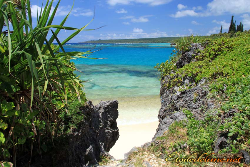 image_nouvelle_caledonie (6)