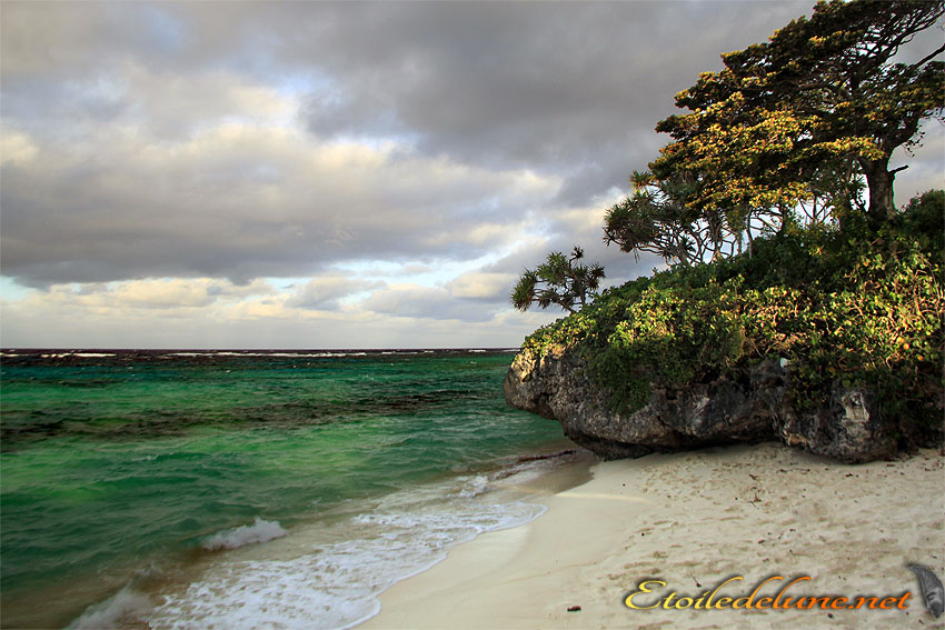 image_nouvelle_caledonie (73)