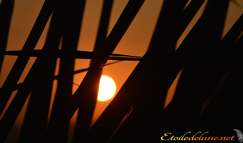 coucher de soleil Asie (5)