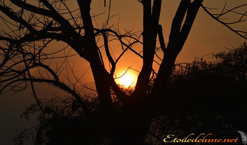 coucher de soleil Asie (9)