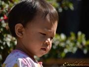 regards de thailande (27)
