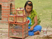 regards de thailande (55)