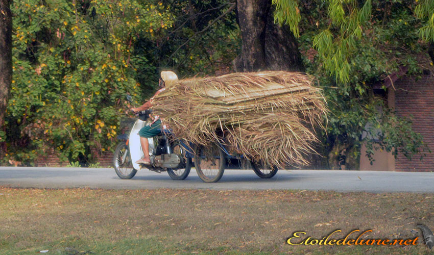 MOYENS DE LOCOMOTION_THAILANDE (3)