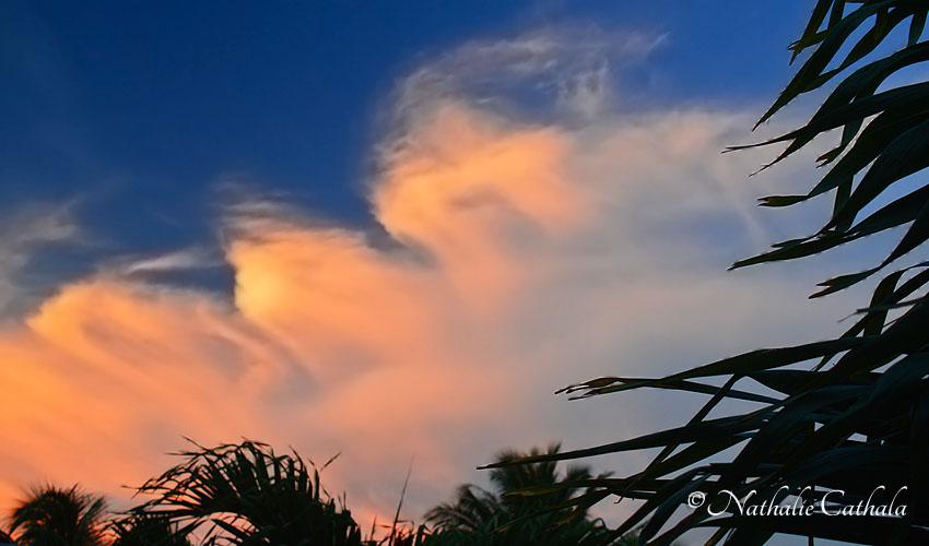 Reflets de Bora Bora (6)