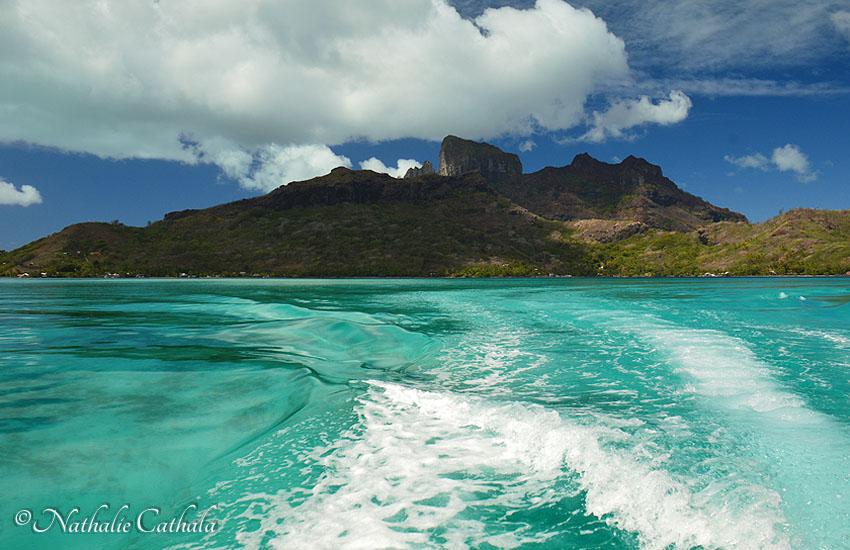 tour en bateau lagon bora bora (2)