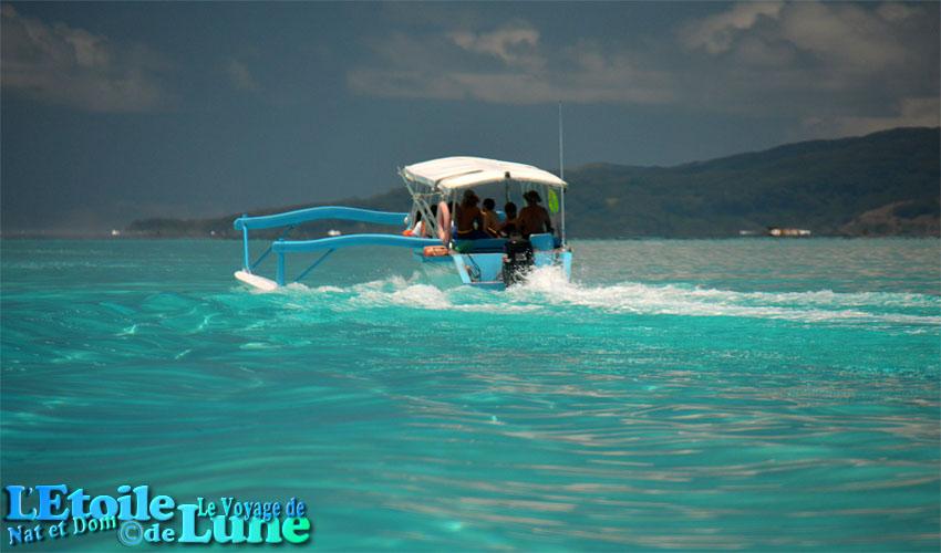 tour en bateau lagon bora bora (24)