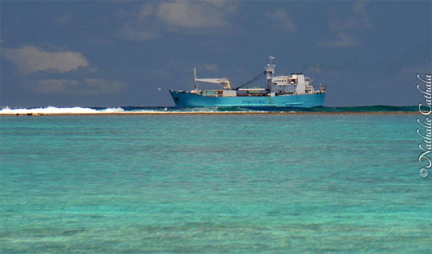 tour en bateau lagon bora bora (28)