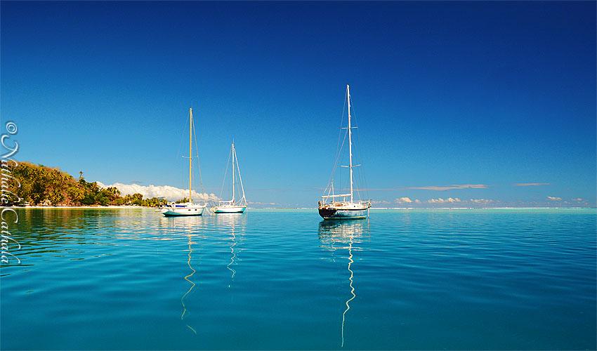 tour en bateau lagon bora bora (33)