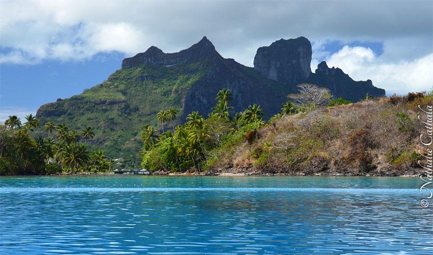 tour en bateau lagon bora bora (38)