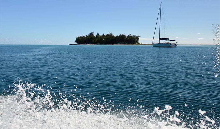 tour en bateau lagon bora bora (48)