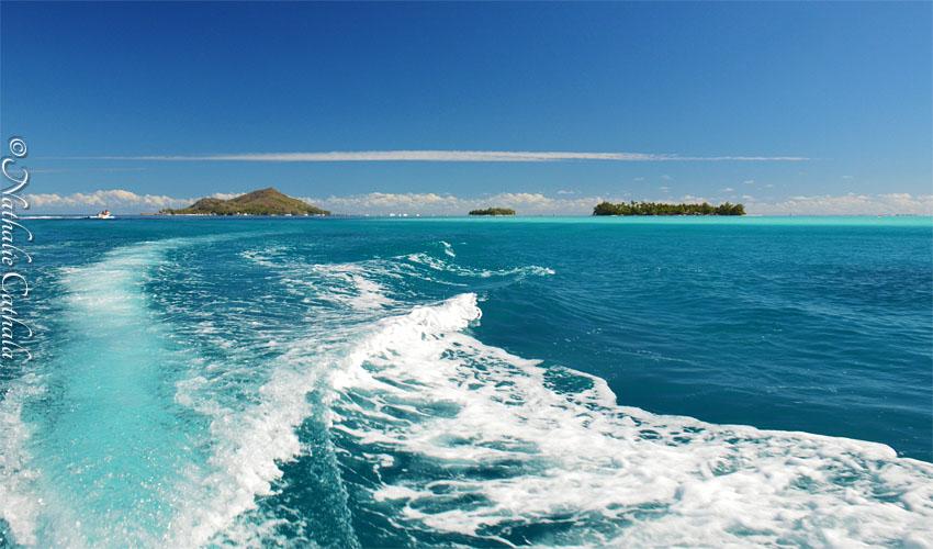 tour en bateau lagon bora bora (50)