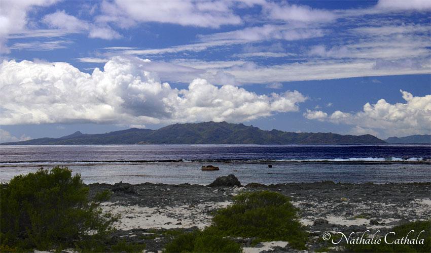 tour en bateau lagon bora bora (9)