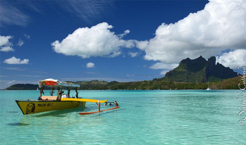 tour en bateau lagon bora bora raies (1)