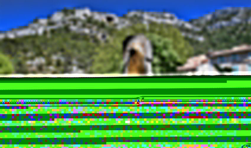 fontaine-de-vaucluse-5