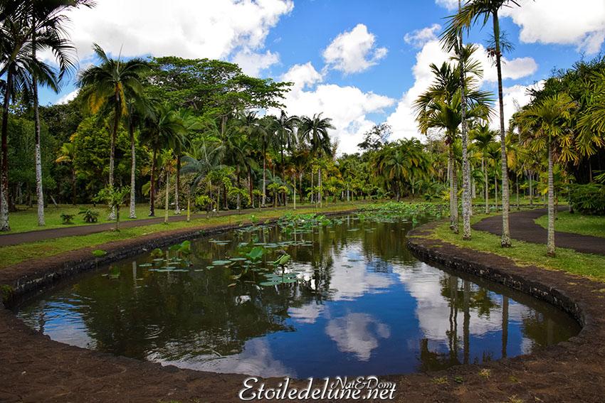 Le jardin de pamplemousse carnet de voyage for Jardin pamplemousse