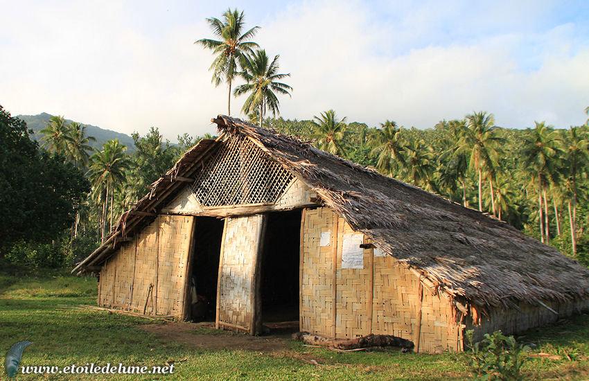 VANUATU : le kava, Produit d'autrefois et consommation d'aujourd'hui