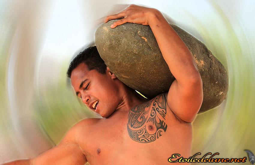 Place des cocotiers spectaculaires porteurs de pierre