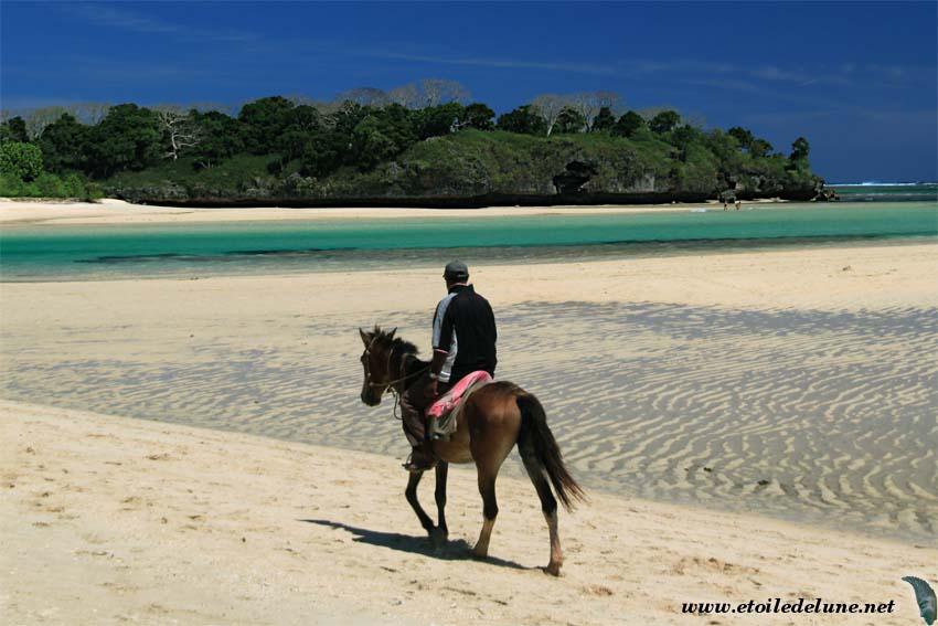 FIDJI : la côte de corail