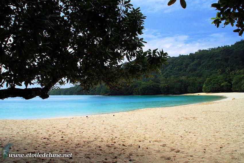 Champagne beach sur l'île de Santo