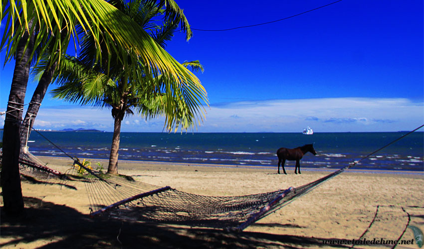 FIJI : ALBUM PHOTO Viti Levu