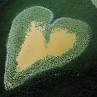 Le coeur de Voh, gag de la Saint Valentin