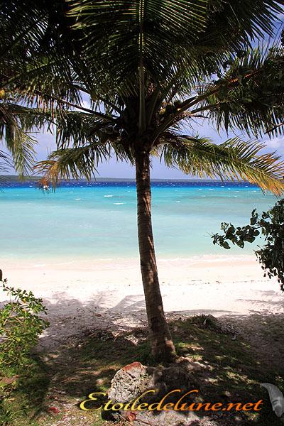 Easo, la plage la plus prisée de Lifou