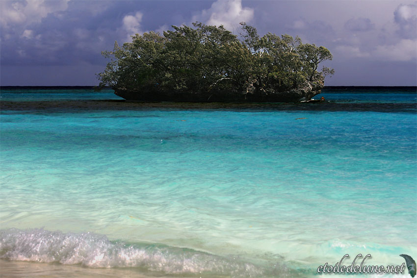 Luengôni, la magie des couleurs lagon