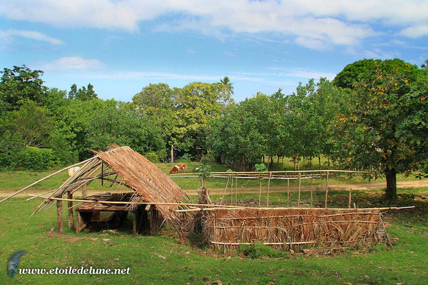 VANUATU : logis des îles