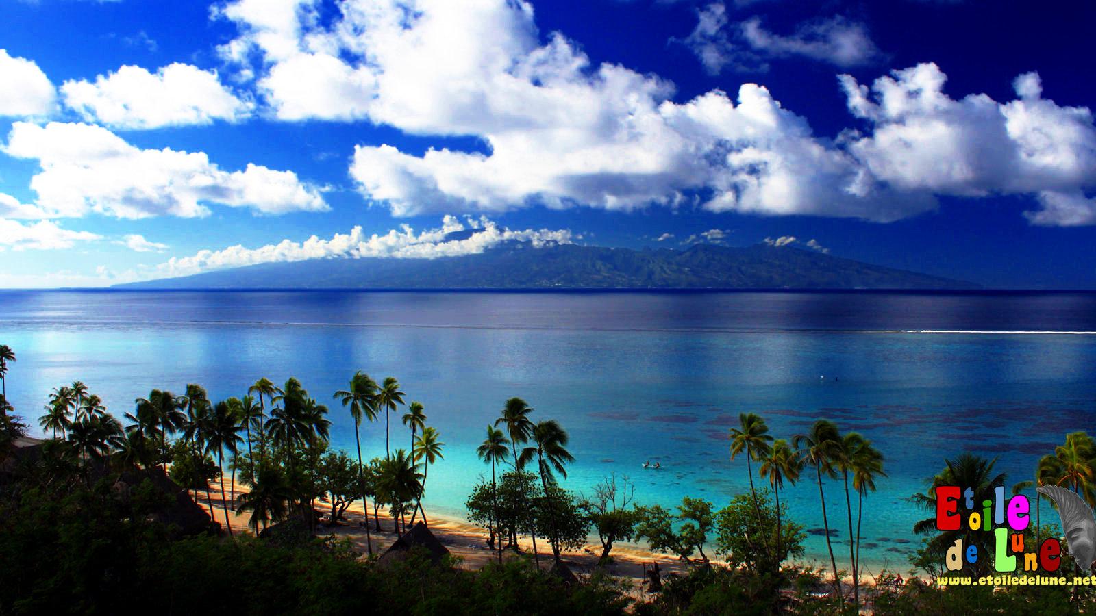 Polynesie r trospective deux ans d escale moorea for Meilleur ecran 24 pouces