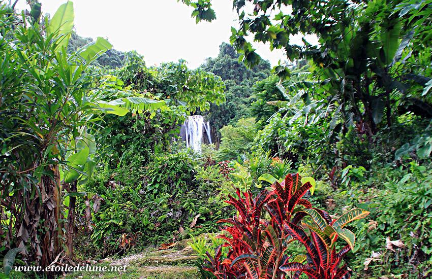 VANUATU-île de Pentecôte : village de waterfalls, rencontre et cascade