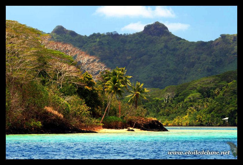 POLYNESIE : rétrospective deux ans d'escale, Huahine