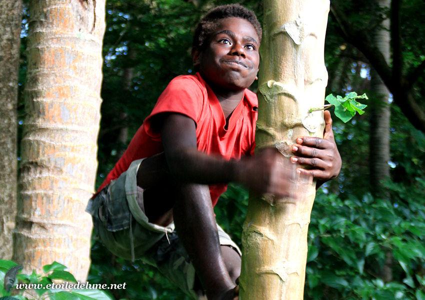 VANUATU : les enfants après l'école