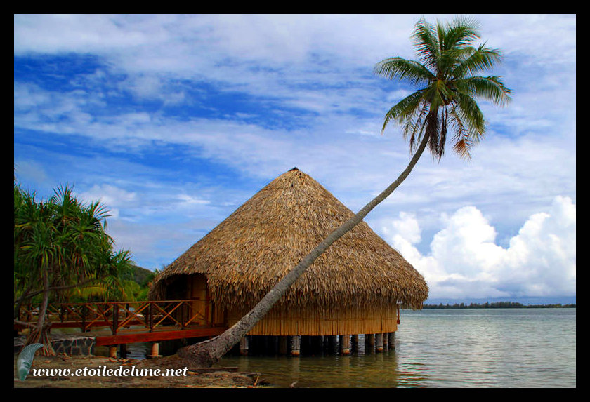 HUAHINE : une terre de marae