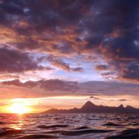 TAHITI : L'Etoile du couchant