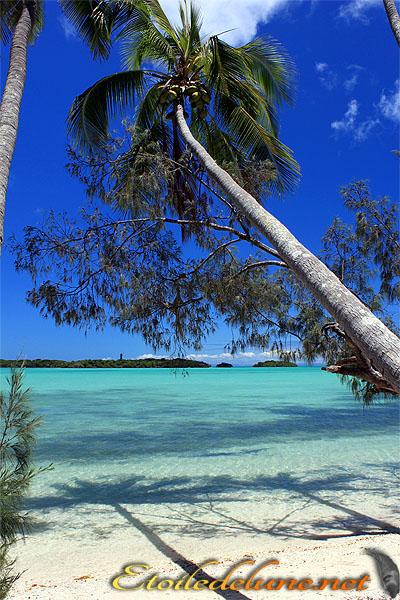 Baie de Kuumo où la perfection est reine