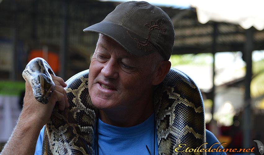 Reptil Dandy