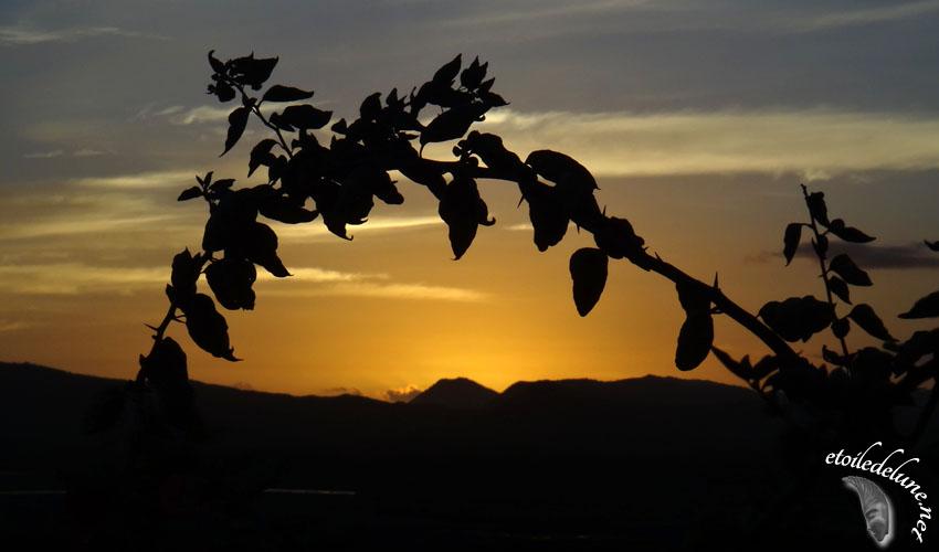 Fan de couchers de soleil