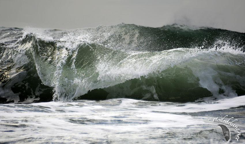 Lettre d'Amour… à l'océan.