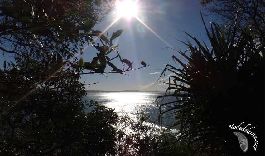 Contre-jours Pacifiques