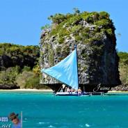 Rétrospective 2013 … L'île des Pins
