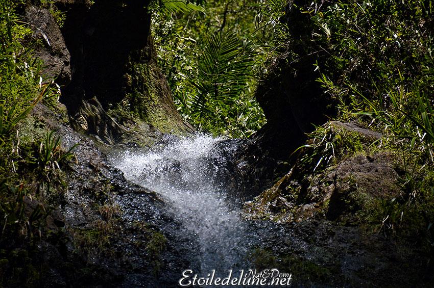 Grand Etang et cascades de Bras D'Annette