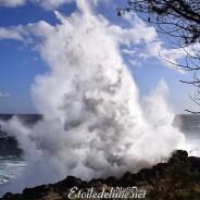 Bye Bye la Réunion, en apothéose de houle !