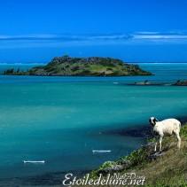 Rodrigues, la Baie Topaze