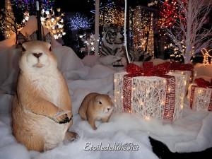 La magie de Noël nous attend en France avec la famille