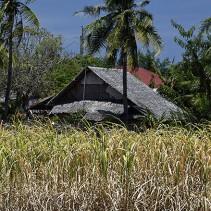Philippines, hors des sentiers battus